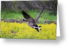 Mustard Flight Greeting Card