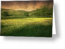 Mustard Grass Greeting Card