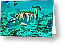 Mutton Snapper Greeting Card