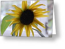 My Beautiful Sunflower Greeting Card