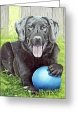 My Big Blue Ball Greeting Card