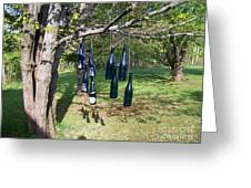 My Bottle Tree - Photograph Greeting Card