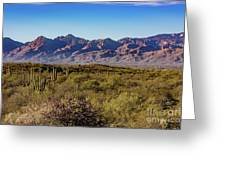 My Catalina Mountains Greeting Card