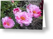 My Favorite Flower Greeting Card