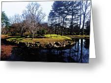 My Favorite Pond Greeting Card