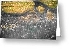 My First Manipulated Image Crowd Of Dandelions In Shadow Of Tree Branches Greeting Card