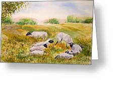 My Flock Of Sheep Greeting Card