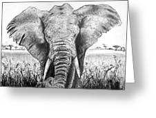 My Friend The Elephant II Greeting Card