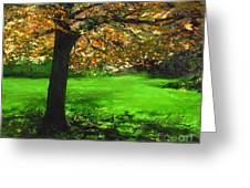 My Love Of Trees I Greeting Card