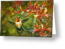 My Loving Hummingbird Greeting Card