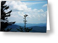 My Mountain Bird Greeting Card