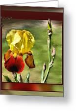 My Painted Iris Greeting Card