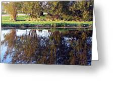 My Pond Greeting Card