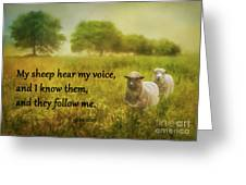My Sheep Hear My Voice Greeting Card
