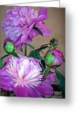 My Spring Garden Peony Greeting Card