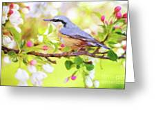 My Summer Bird Greeting Card