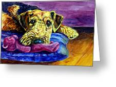 My Teddy Airedale Terrier Greeting Card by Lyn Cook