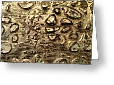 My Textured Stones C Greeting Card