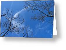 My Trees No.13 Greeting Card
