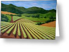 My Vineyard Greeting Card