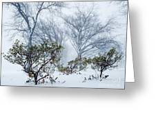 My Winter Love Greeting Card
