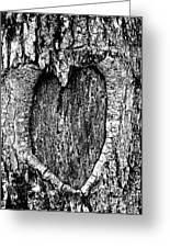 My Wood Heart  Greeting Card