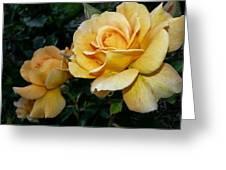 My Yellow Rose Greeting Card