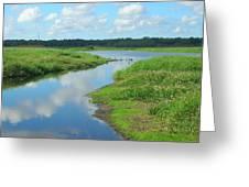 Myakka River Reflections Greeting Card