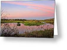 Myakka Wetlands By H H Photography Of Florida Greeting Card