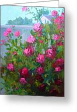 Myback Yard Roses Greeting Card
