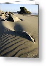Myers Creek Beach Oregon 1 Greeting Card