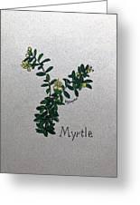 Myrtle Greeting Card