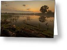 Mysterious Morning Time In Swamp Area. Landscape Greeting Card