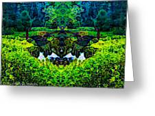 Mysterious Woods Greeting Card