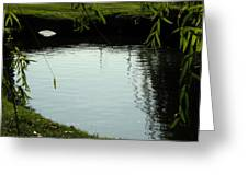 Mystery  Pond In The Green Greeting Card