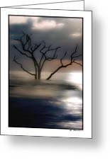 Mystery Tree Greeting Card