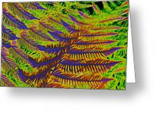 Mystic Fern Greeting Card