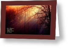 Mystic Forest At Dawn L A Greeting Card