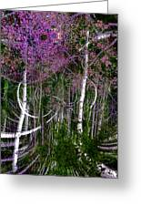 Mystic Woods Greeting Card