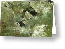 Mystical Tree Greeting Card