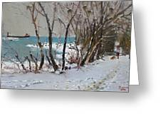 Naked Trees By The Lake Shore Greeting Card