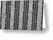 Nanowires, Nanowalls, Sem Greeting Card