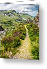 Nant Ffrancon Footpath Greeting Card