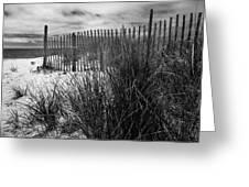 Nantucket Harbor Beach Dunes  Greeting Card by Thomas Schoeller