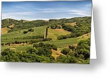 Napa Valley California Panoramic Greeting Card