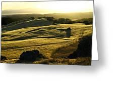 Napa Valley Greeting Card