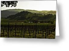 Napa Valley Panorama From The Silverado Trail Greeting Card