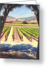 Napa Wine Vineyard Summer Greeting Card