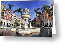 Naples Florida Iv Greeting Card