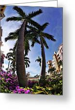 Naples Florida V Greeting Card